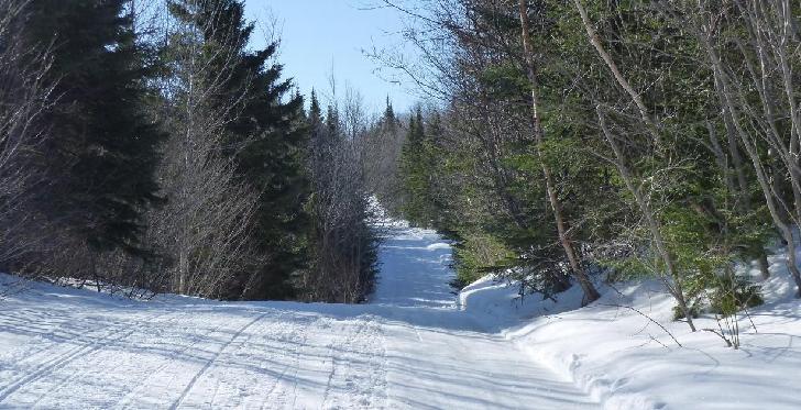 sentier vtt Québec trans 63